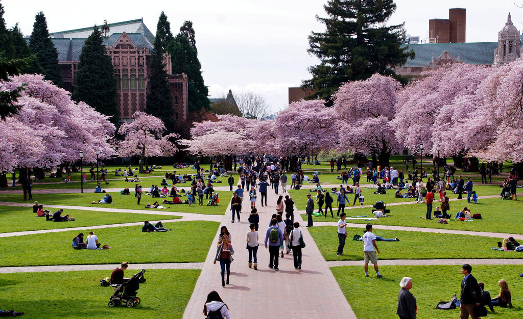 university-washington-cheapest-colleges-most-beautiful-college-campuses-1024x626